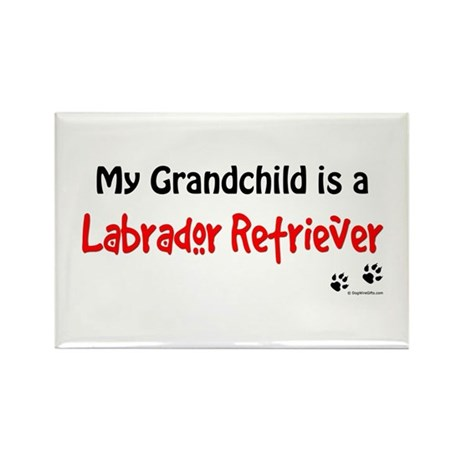 Lab Grandchild Rectangle Magnet