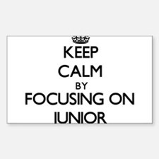 Keep Calm by focusing on Junior Decal