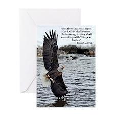 Wide Winged Wonder Greeting Cards