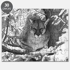 Mountain Lion Hideout Puzzle