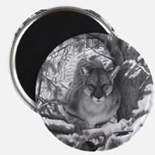 Mountain Lion Hideout Magnets