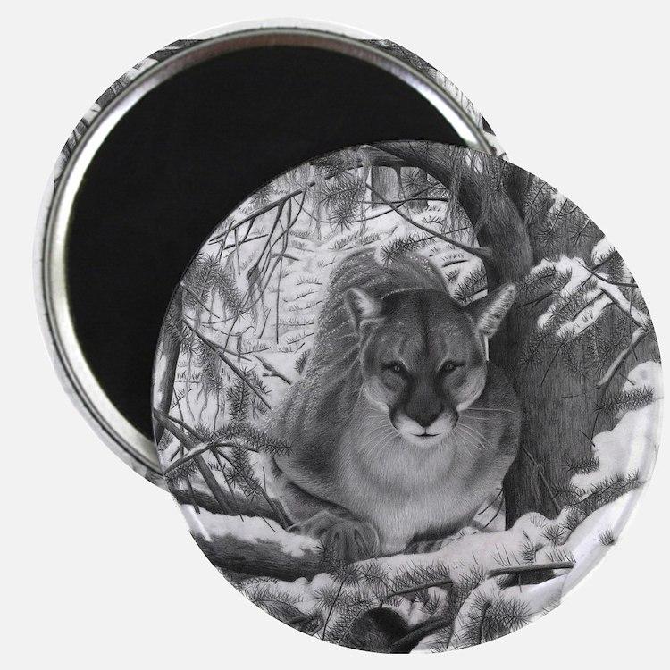 Mountain Lion Hideout Magnets