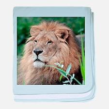 Lion010 baby blanket