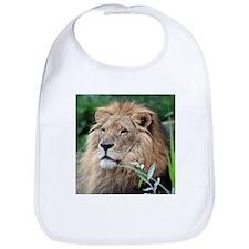Lion010 Bib