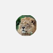 Lion010 Mini Button (10 pack)
