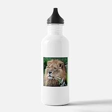 Lion010 Water Bottle
