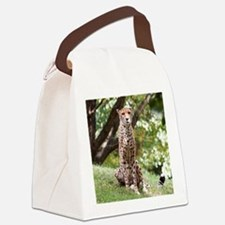 Watching Cheetah Canvas Lunch Bag