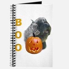 Bouvier Boo Journal