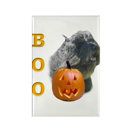 Bouvier Boo Rectangle Magnet