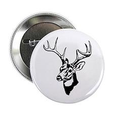8 Point Buck - Whitetail Button