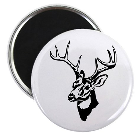 8 Point Buck - Whitetail Magnet