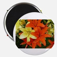 Orange And Yellow Flowers Magnets
