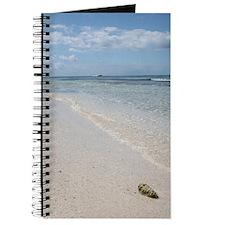 Isla Saona Journal