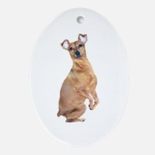 Miniature Pinscher (red) Ornament (Oval)