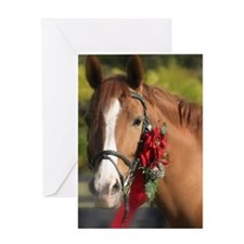 Christmas Horse Greeting Cards