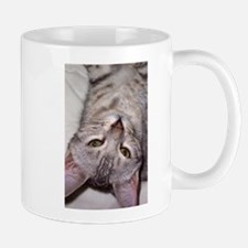 silver bengal kitten Mug