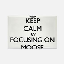 Keep Calm by focusing on Moose Magnets