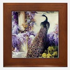 Bidau Peacock, Doves, Wisteria Framed Tile