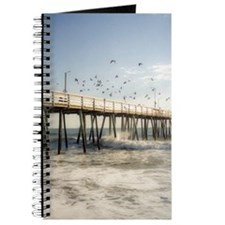 Seagulls and the Pier Journal
