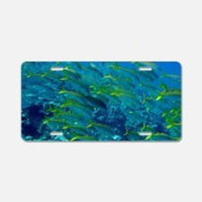 Yellowfin Goatfish Aluminum License Plate
