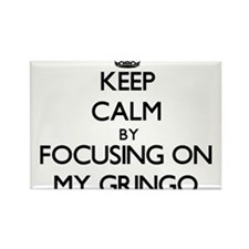 Keep Calm by focusing on My Gringo Magnets