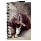 Anteater Journals & Spiral Notebooks