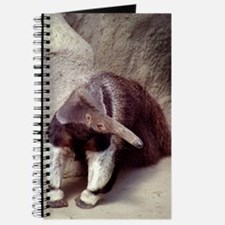 Giant Anteater Nose Journal