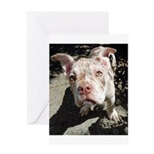 Olde English Bulldogge Puppy Greeting Cards