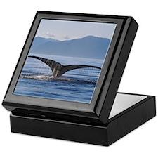 Orca Tail Keepsake Gift Box