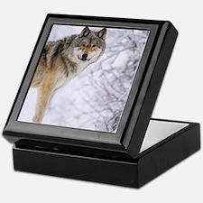 Winter Wolf Keepsake Gift Box