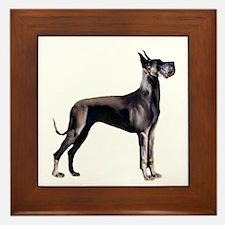 Black Great Dane (stnd) Framed Tile