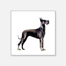 "Black Great Dane (stnd) Square Sticker 3"" x 3"""