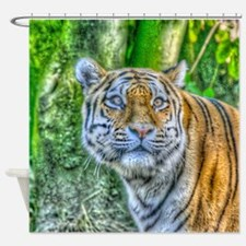 Tiger,Painting Shower Curtain
