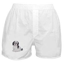 Shih Tzu (A) Boxer Shorts