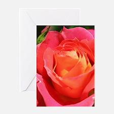 Beautiful pink rose flower Greeting Cards