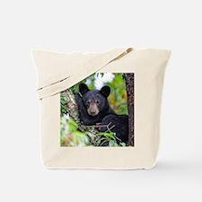 Baby Black Bear Tote Bag