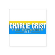 "Cute Charlie Square Sticker 3"" x 3"""