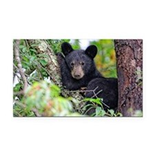 Baby Black Bear Rectangle Car Magnet