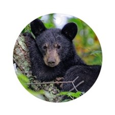 Baby Black Bear Ornament (Round)