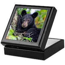 Baby Black Bear Keepsake Box