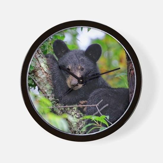 Baby Black Bear Wall Clock