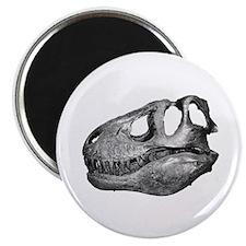 T-Rex Skull Magnet