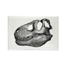 T-Rex Skull Rectangle Magnet