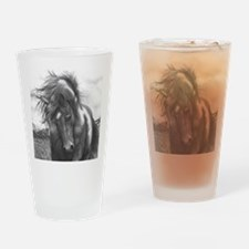 Sacred Stomping Grounds Drinking Glass
