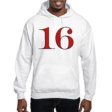 Cute 16 Hoodie