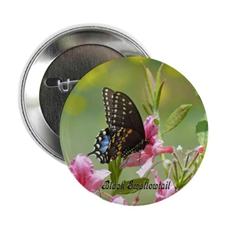 Black Swallowtail Button