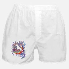Unicorn_Gallop Boxer Shorts