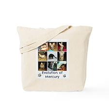 Evolution of Mercury Tote Bag