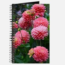 Cute Dahlias Journal