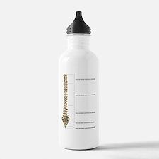 Unique Neurosurgery Water Bottle